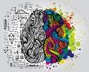 什么是全脑效能